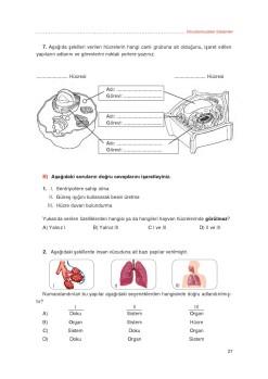 3. sınıf fen bilimleri anadol sayfa 28