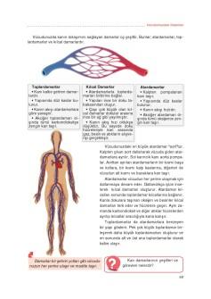 4. Sınıf Matematik Ders Kitabı Cevapları Ata Yayınları Sayfa-60